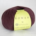 Amy Butler Belle Organic Aran yarn